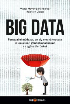 Big Data (e-könyv)