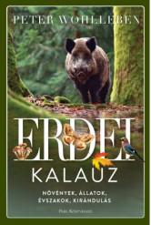 Erdei kalauz - Növények, állatok, évszakok, kirándulás (e-könyv)
