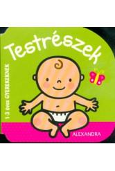 Testrészek - 1-3 éves gyerekeknek
