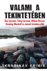 Valami a tekintetében - Svéd kriminovellák (e-könyv)