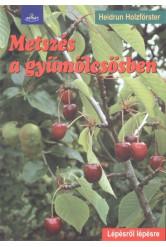 Metszés a gyümölcsösben /Lépésről lépésre