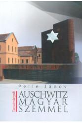 Auschwitz magyar szemmel /Tanulmányok