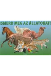 Ismerd meg az állatokat! (leporelló)