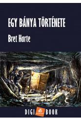 Egy bánya története (e-könyv)