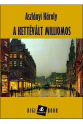 A kettévált milliomos (e-könyv)