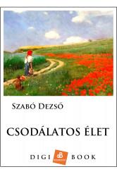 Csodálatos élet (e-könyv)