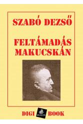Feltámadás Makucskán (e-könyv)