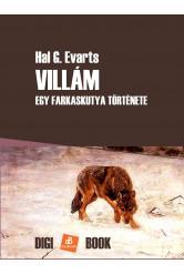 Villám (e-könyv)