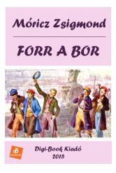 Forr a bor (e-könyv)