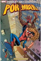 Marvel-akcióhősök: Pókember - Pókvadászat (képregény)