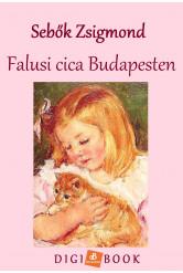 Falusi cica Budapesten (e-könyv)